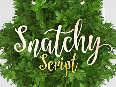 Snatchy Script