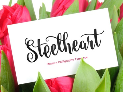 Steelheart handmade lettering brush watercolor calligraphy cursive script ink bounced elegant modern contemporary