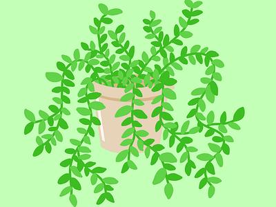 Pothos plant illustration plantpot planter art earth greenery green pothos plants illustration design