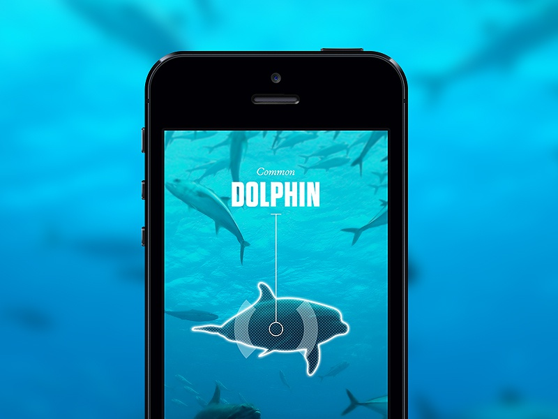 Anipedia sea fish iphone app concept blue deep scan stalk education augmented reality