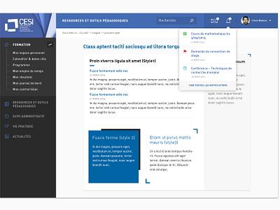 CESI Education Dashboard data product mobile interface education dashboard