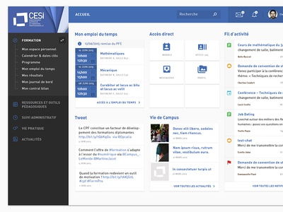 CESI Education Dashboard data product mobile interface education dashboard