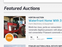 Auction Site Homepage