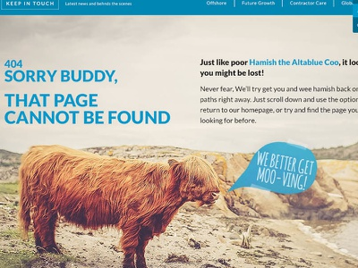 404 Page hamish highland cow blog website 404