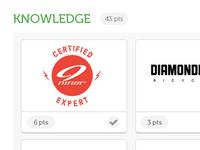 Expert Profile - Knowledge