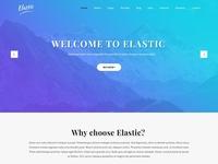 buy readymade custom WordPress theme