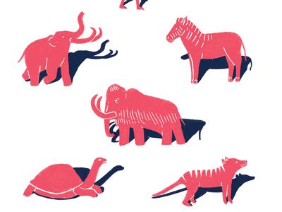 Extinct Animals Final