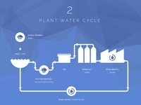 Plant Water Cycle