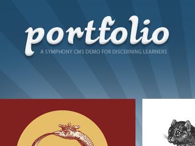 Symphony CMS demo site teaser