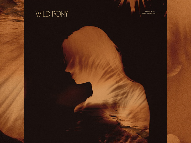 Wild Pony / Larchmont (feat. Leucadia) branding new music warm silhouette wild pony woman texture colors dream leucadia graphic design art direction