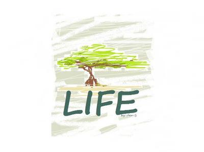Tree of Life Artisan