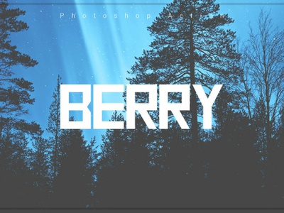 Berry Photoshop Action deal best selling best creative photography photoshop overlays photoshop action photographers lightroom presets berry photoshop action photoeffect 10 off discount graphic design effects editing design campaign