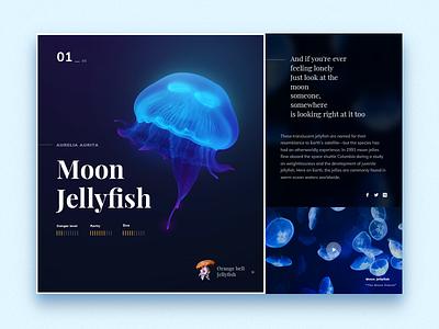 Jellyfish exploration glowy serif jellyfish sealife ui web landing