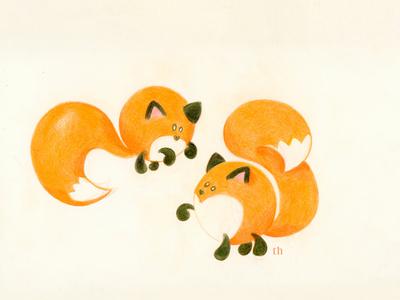 Family Fox illustration
