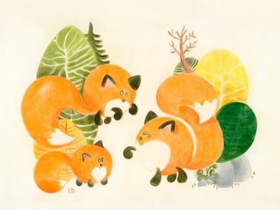 Family Fox Together illustration