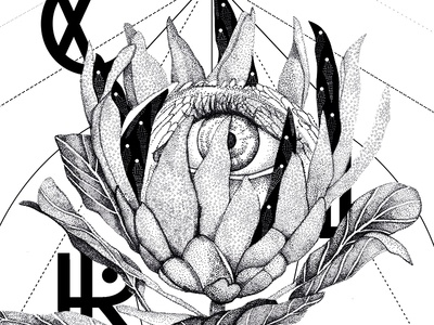 Monochrome bw points eye flower showroom drawing poster dot work pointillism dots illustrations