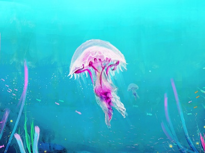 Jellyfish  design arts digital brushes drawing painting photoshop blue ocean digital painting jellyfish illustration