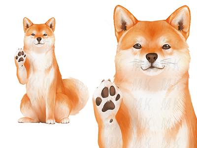 Shiba inu mascot - Front branding mascot cute animal japan cute fur clip studio paint realistic dog beckoning shiba inu digital art illustration