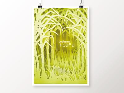 Ledesma +caña - Cut out poster
