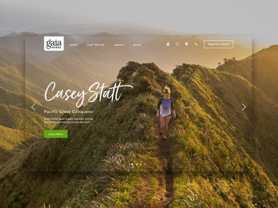 Gaia Herbs Home sketch carousel herbs webdesign web design website web