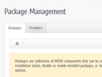 Custom manager theme