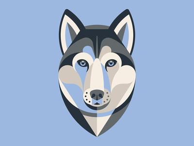 Mystery Project 70.2 siberian husky nathan goldman dan kuhlken winter blue husky geometric dog dkng
