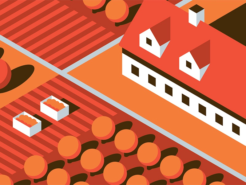 Mystery Project 71.1 nathan goldman dan kuhlken farmhouse crops oranges shadow farm isometric vector dkng