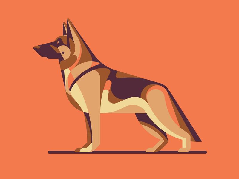 Illustration for Designers: Create Your Own Geometric Animal german shepard dkng studios nathan goldman dan kuhlken skillshare geometry geometric animal dog dkng