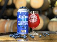 Blueberry sournova hero