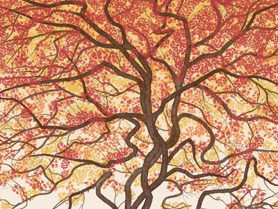 Elk Art Print vector tree maple leaves fall autumn deer elk poster silkscreen screenprint dan kuhlken nathan goldman art print dave matthews band