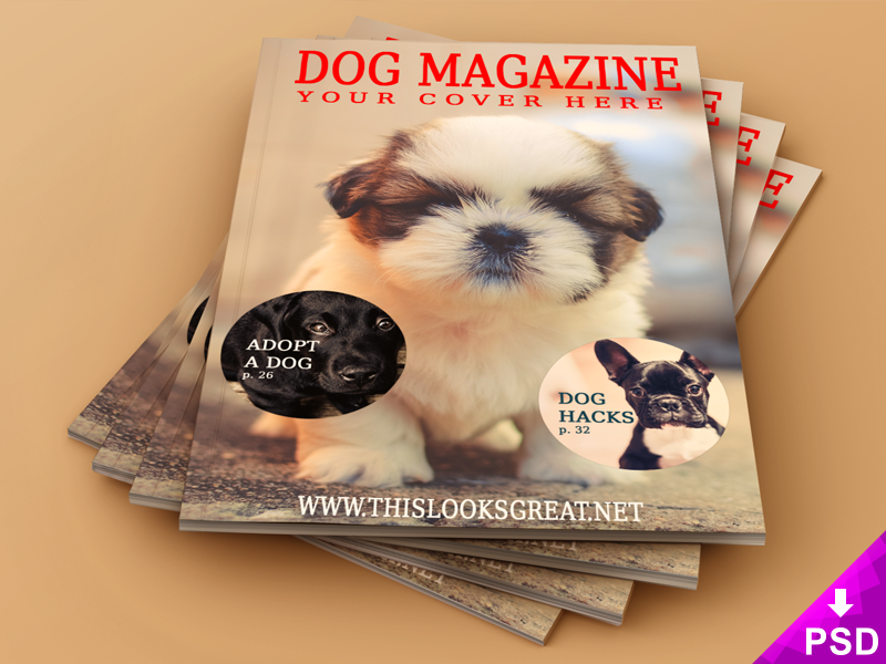 Magazine cover and interior mock up 800 x 600 corner