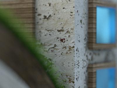 3D building texture details