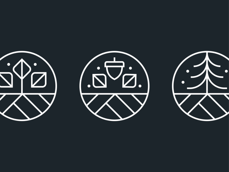 Seasonal Icons icons set linework line circle winter fall autumn spring pine acron leaf tree minimal simple seasons badge icons