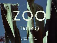 Zootropio