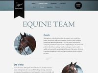 The Equine Team
