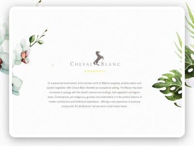 Cheval Blanc Micro Site texture graphicdesign hotel clean white website travel luxury landingpage webdesign