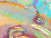 Chameleon Dreams - Detail