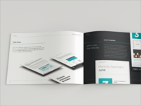 Brand Guidelines: Sales and Marketing Collateral
