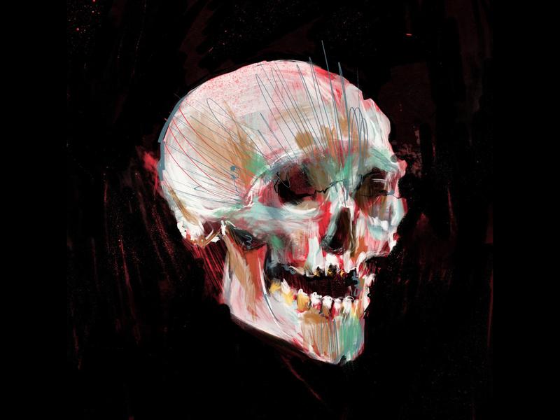 Skull color procreate art illustration skull