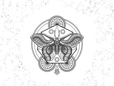 Bateflay butterfly illustration sacred geometry sacredgeometry butterfly adobe illustrator branding animals vector illustration animal