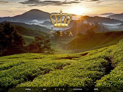 Tea Enriched Alcohol web responsive ux parallax tea alcohol design