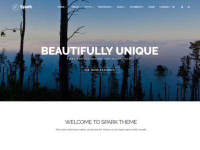 Home Page - Spark WordPress Theme