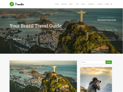 Home Page - Traveler WordPress Theme