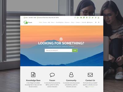 Forum WordPress Theme - Community Site Builder