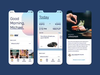Private Aviation App Concept icons design ux typography ui branding icon brand flat mobile aviation airline ios app