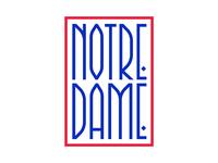 Notre-Dame ❤️🇫🇷