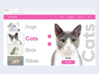 Petshop design concept ( Rebounded )