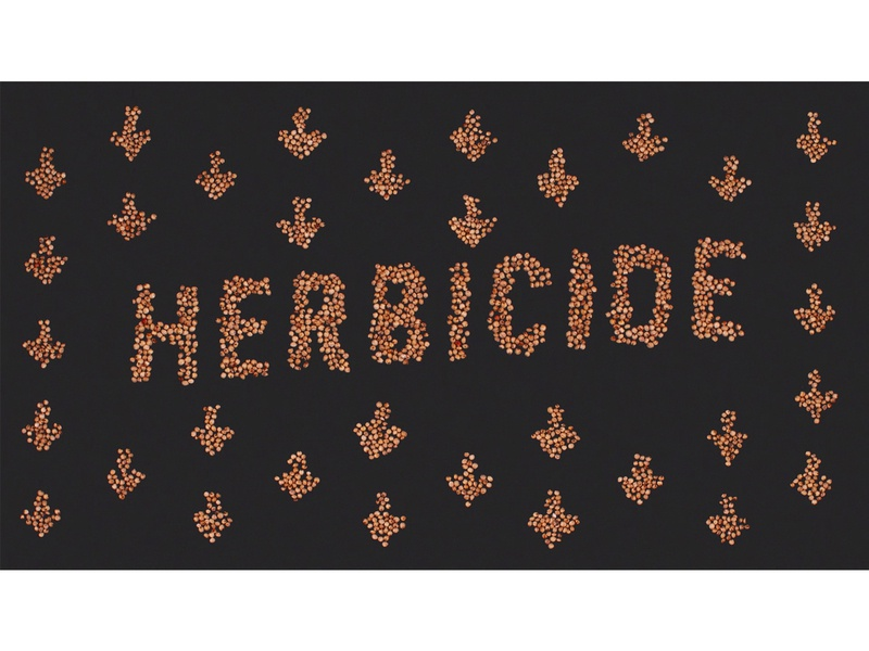 Sorghum for Farmers done by hand illustration concept ag agriculture stopmotion seed sorghum less herbicide