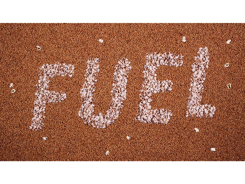 Sorghum as Fuel illustration concept ag agriculture stopmotion seed sorghum popped energy