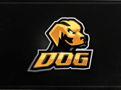 Dog Mascot Logo yellow gold animal dog angry art e-sports logo illustration design branding vector mascot logo mascot